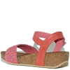 WD-141019-CORAL-2