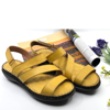 WD-151007-YELLOW-1